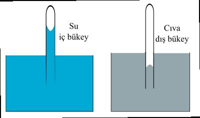 kılcallık nedir su cıva sınır çizgisi