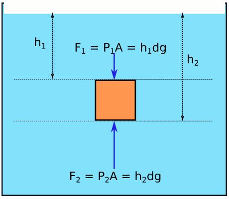 Kaldırma kuvvetinin sebebi basınç farkı ve basınç kuvveti farkı