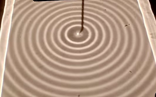 Dairesel su dalgaları